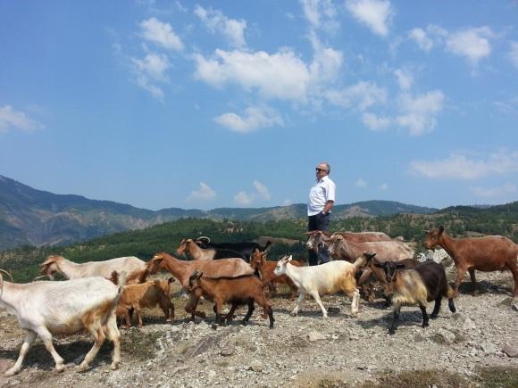 Ferit Balla with friends, Orenje, August 2013